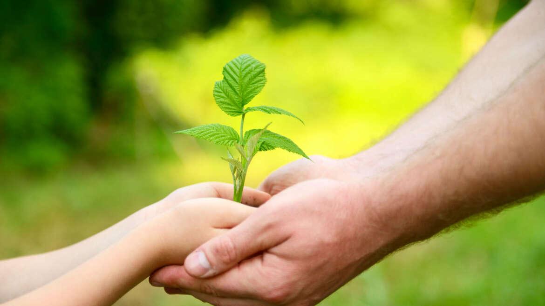 11 – Crescere in Cristo