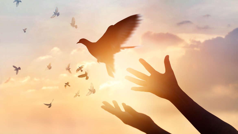17 – I doni dello Spirito