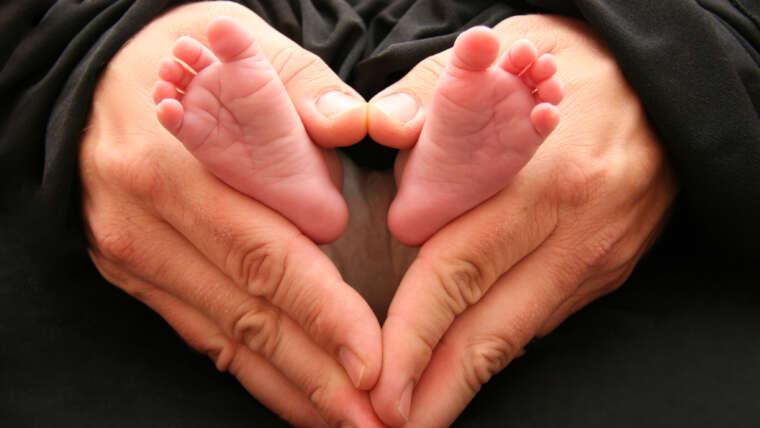 Dichiarazione sulla prospettiva biblica in merito alla vita prima della nascita e alle implicazioni per l'aborto