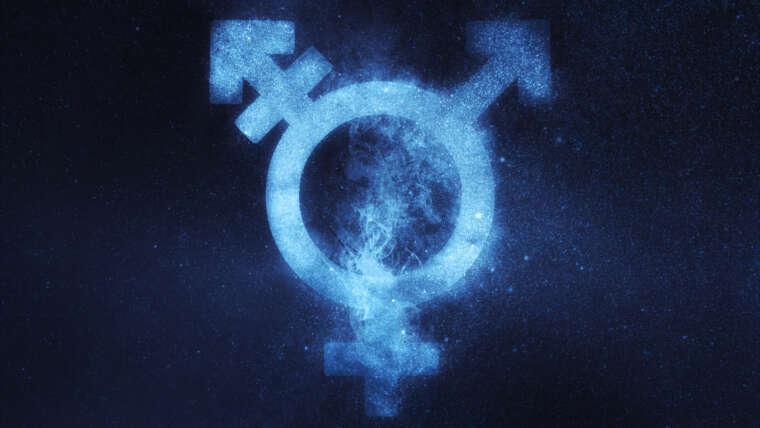 Dichiarazione sul transgender