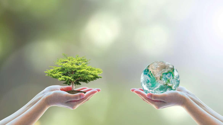Dichiarazione sulla gestione dell'ambiente