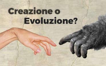 01. Evoluzione e trasformismo
